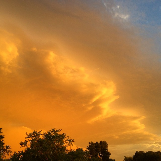 That golden color to the sky is my favorite part about a #duststorm. #arizona #tempe #haboob