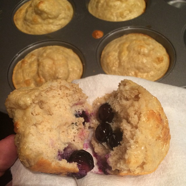 Not the prettiest picture but these turned out pretty great! Wanted some #preworkout #carbs so I took my #proteinpancake recipe, tweaked it slightly and made muffins :) Best part? I ate them ALL. Because #gains. #recipe for these #proteinmuffins:1/2 cup oatmeal (from @myoatmeal, obvi)2 egg whites + 1 whole egg50g (1/3 small container) plain ff Greek yogurt2 Splenda packets (or sweetener of your choice) 1 tsp baking powder I threw in some blueberries, but that's optional of course. Blend ingredients until smooth, pour into muffin tins and bake for about 10-13 mins at 375. Watch them because ovens vary! #macros for ALL SIX: 50P, 33C, 11F, 5g fiber.